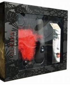 Geisha Gift Box- ideal pentru cadouri - Sex Shop -