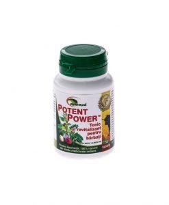 Potent power 50 tablete - Erectie - Potenta -